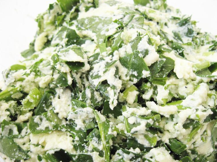 IMG 9401 Ricotta and Spinach Pasta/Lasagna Filling