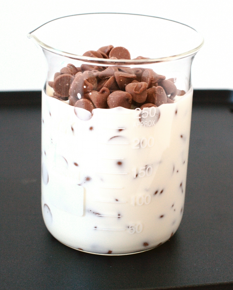 step11 Chocolate Dipped Pretzels